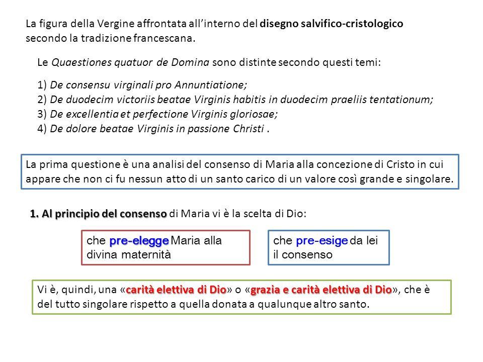 Le Quaestiones quatuor de Domina sono distinte secondo questi temi: