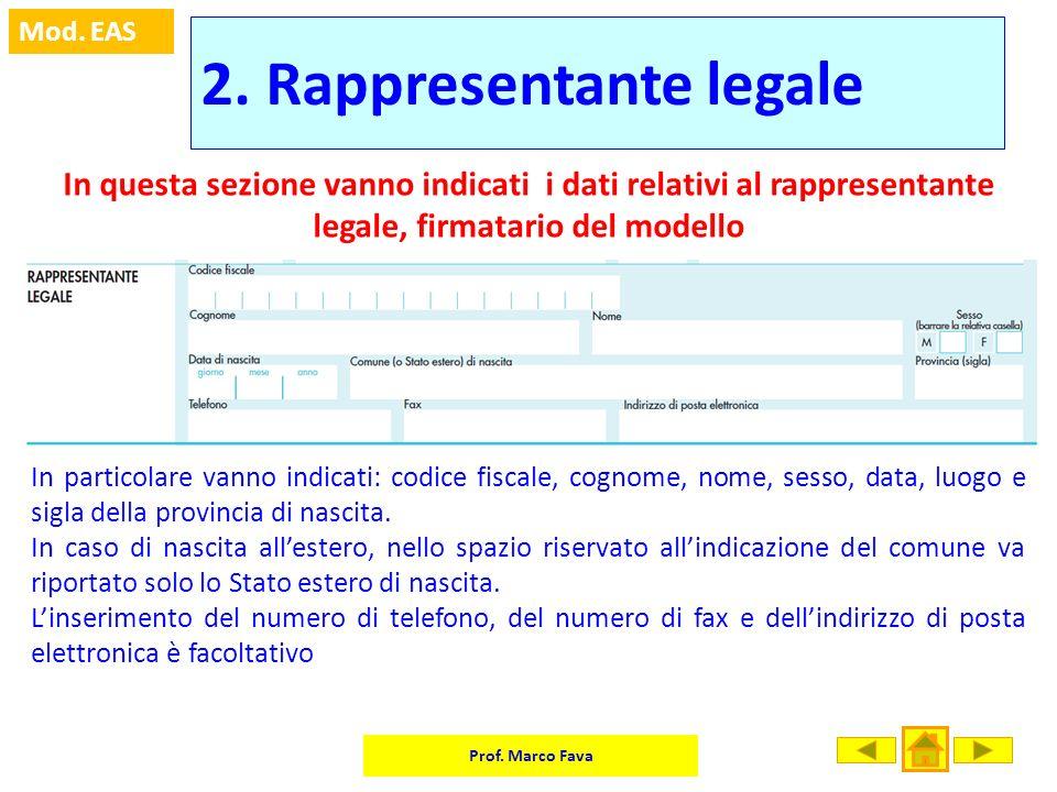 2. Rappresentante legale
