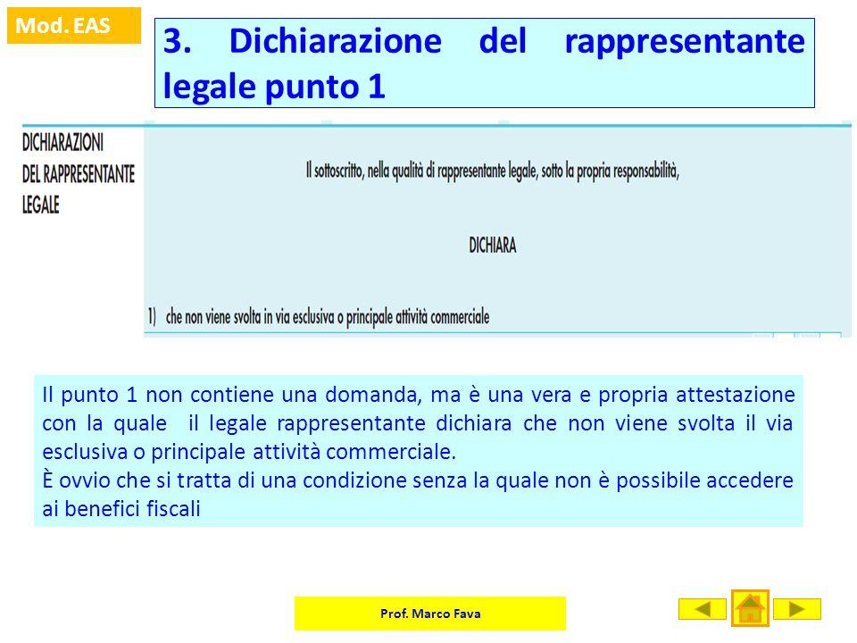 3. Dichiarazione del rappresentante legale punto 1