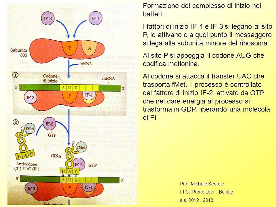 Formazione del complesso di inizio nei batteri