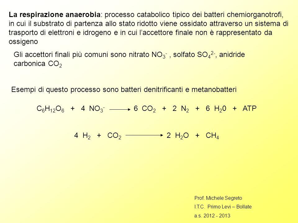 Esempi di questo processo sono batteri denitrificanti e metanobatteri