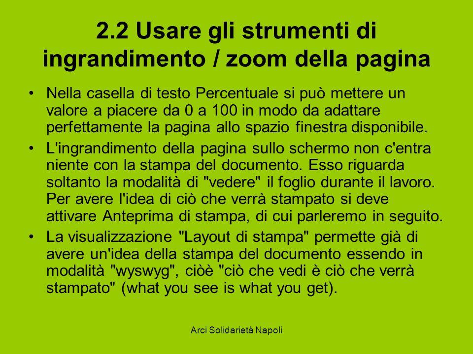 2.2 Usare gli strumenti di ingrandimento / zoom della pagina