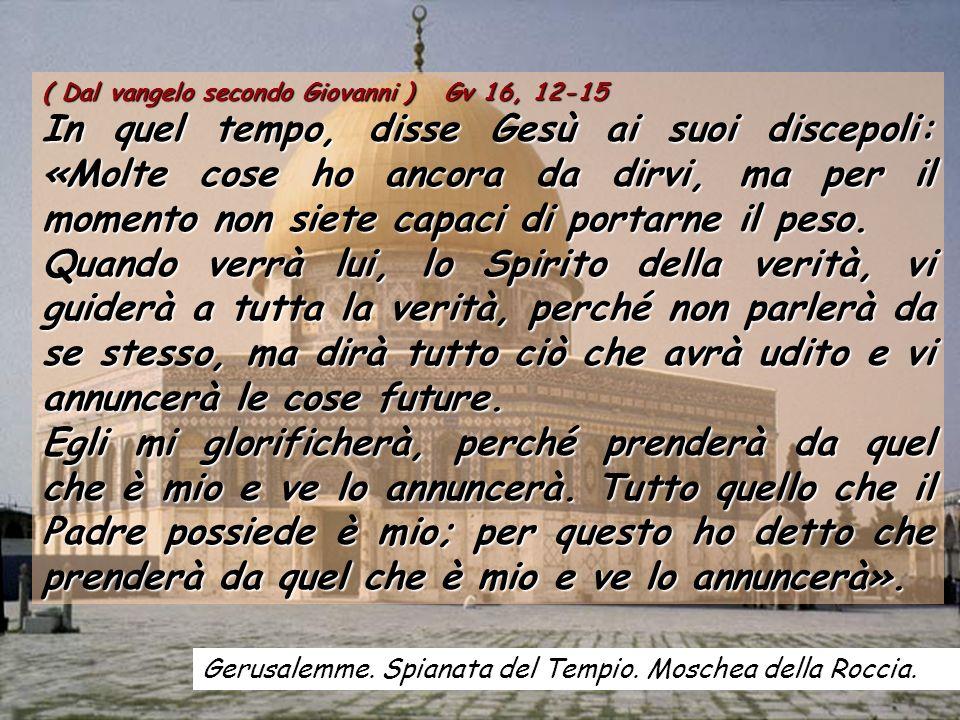 ( Dal vangelo secondo Giovanni ) Gv 16, 12-15
