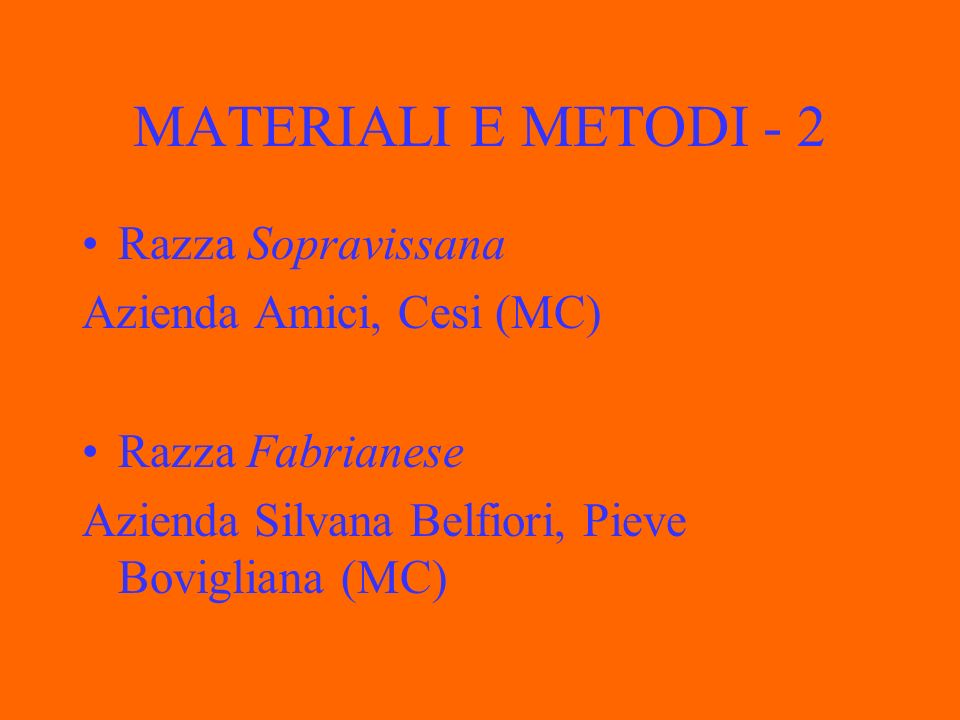 MATERIALI E METODI - 2 Razza Sopravissana Azienda Amici, Cesi (MC)