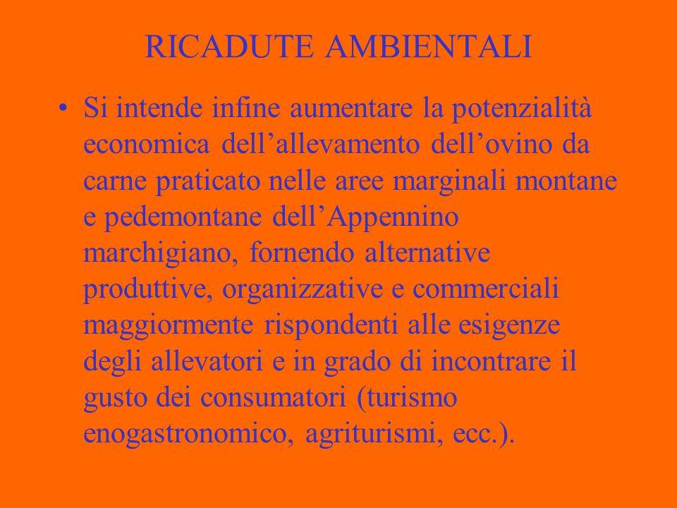 RICADUTE AMBIENTALI
