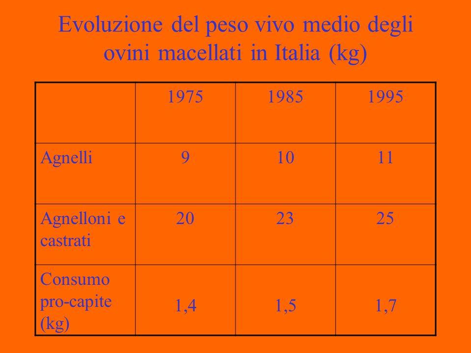 Evoluzione del peso vivo medio degli ovini macellati in Italia (kg)