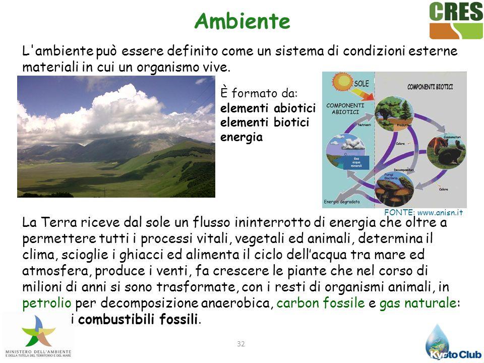 Ambiente L ambiente può essere definito come un sistema di condizioni esterne materiali in cui un organismo vive.