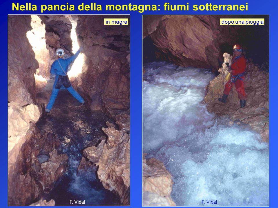 Nella pancia della montagna: fiumi sotterranei