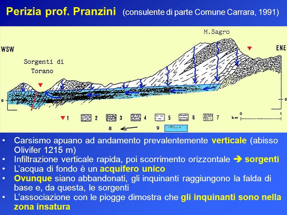 Perizia prof. Pranzini (consulente di parte Comune Carrara, 1991)