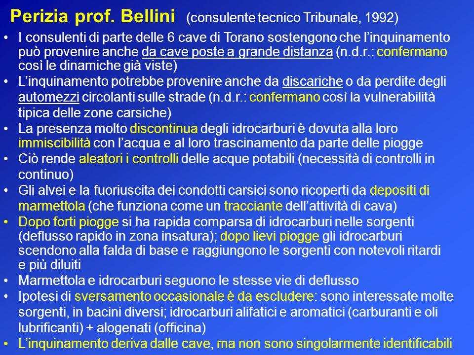 Perizia prof. Bellini (consulente tecnico Tribunale, 1992)