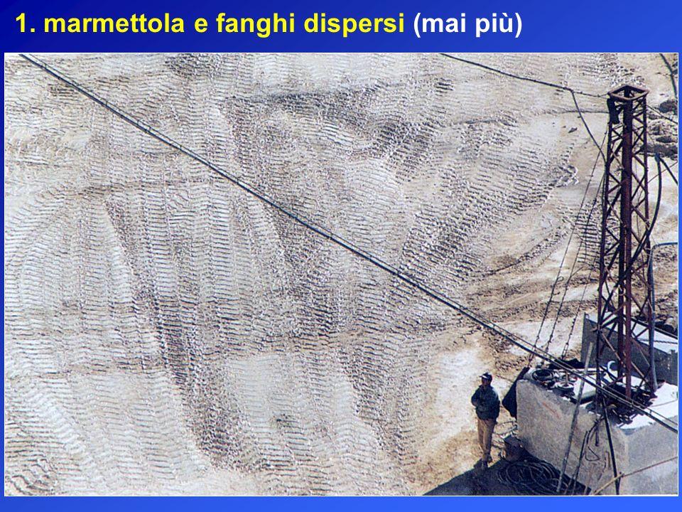 1. marmettola e fanghi dispersi (mai più)
