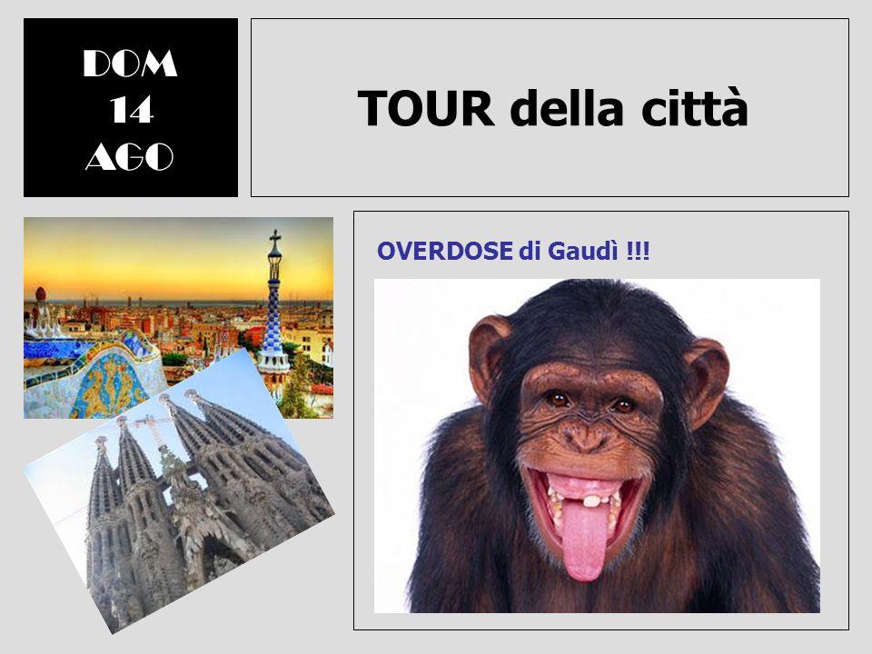 TOUR della città DOM 14 AGO OVERDOSE di Gaudì !!!