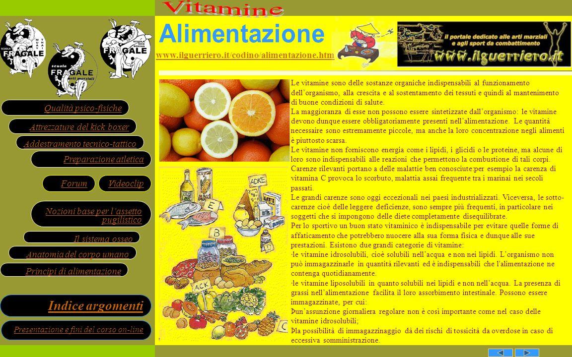 Alimentazione Vitamine www.ilguerriero.it/codino/alimentazione.htm