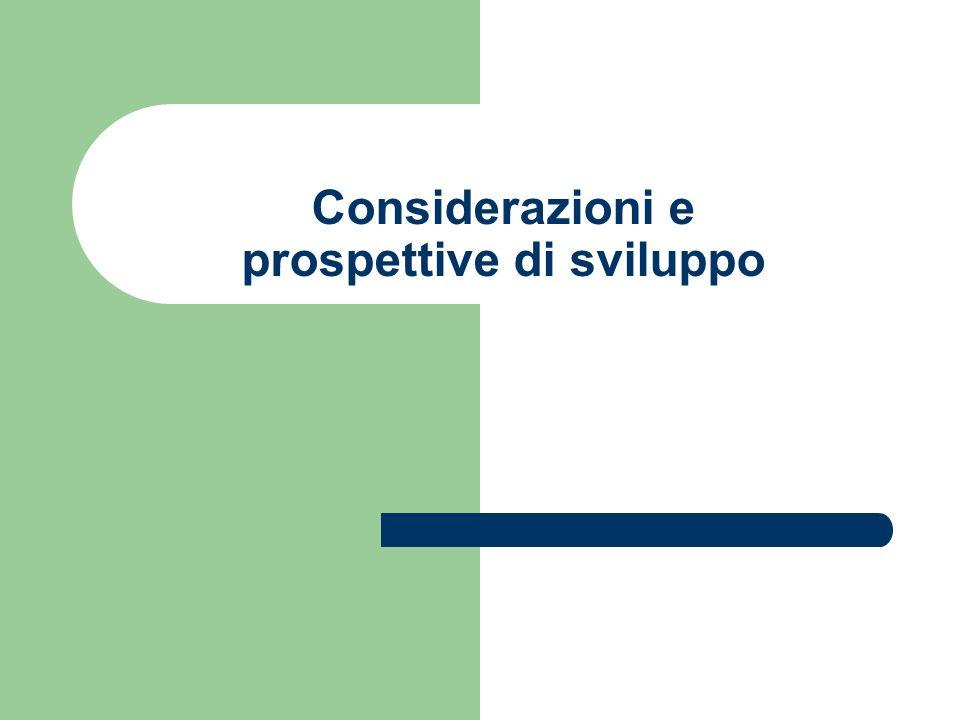 Considerazioni e prospettive di sviluppo