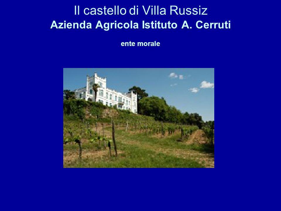 Il castello di Villa Russiz Azienda Agricola Istituto A