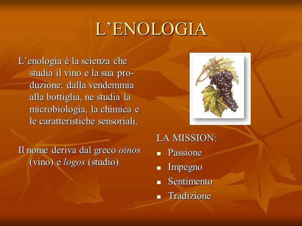 L'ENOLOGIA