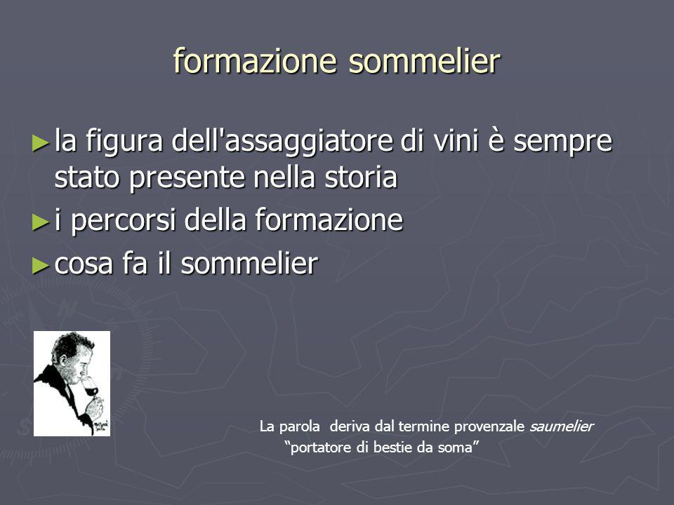 formazione sommelier la figura dell assaggiatore di vini è sempre stato presente nella storia. i percorsi della formazione.