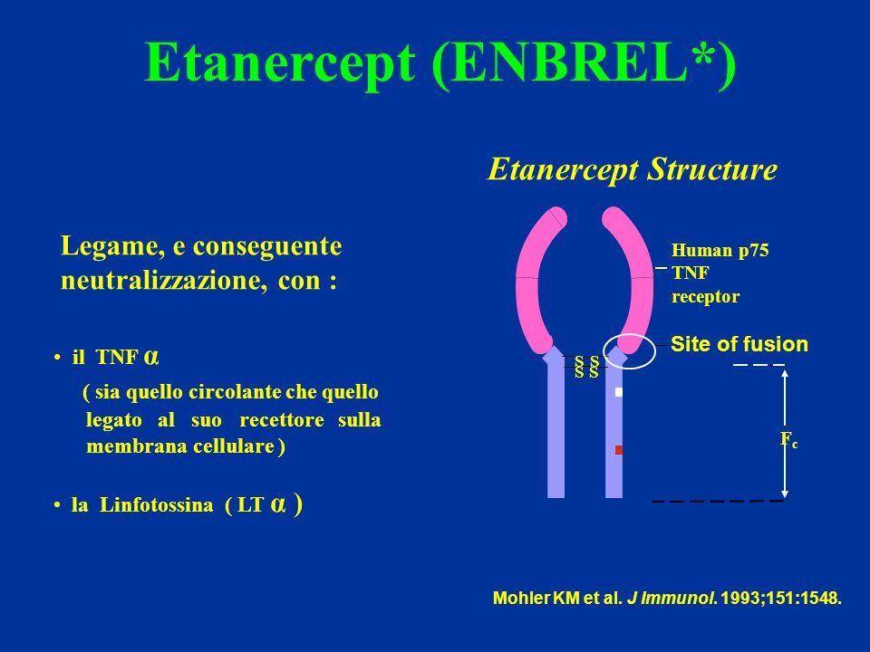 Etanercept (ENBREL*) Etanercept Structure