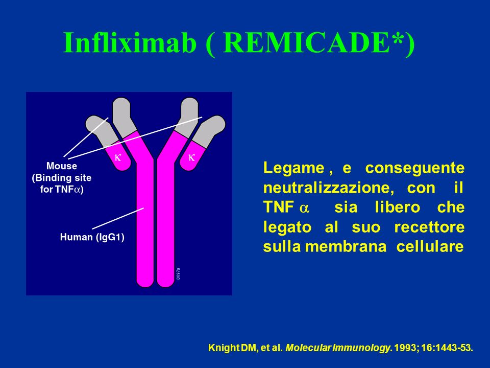 Infliximab ( REMICADE*)