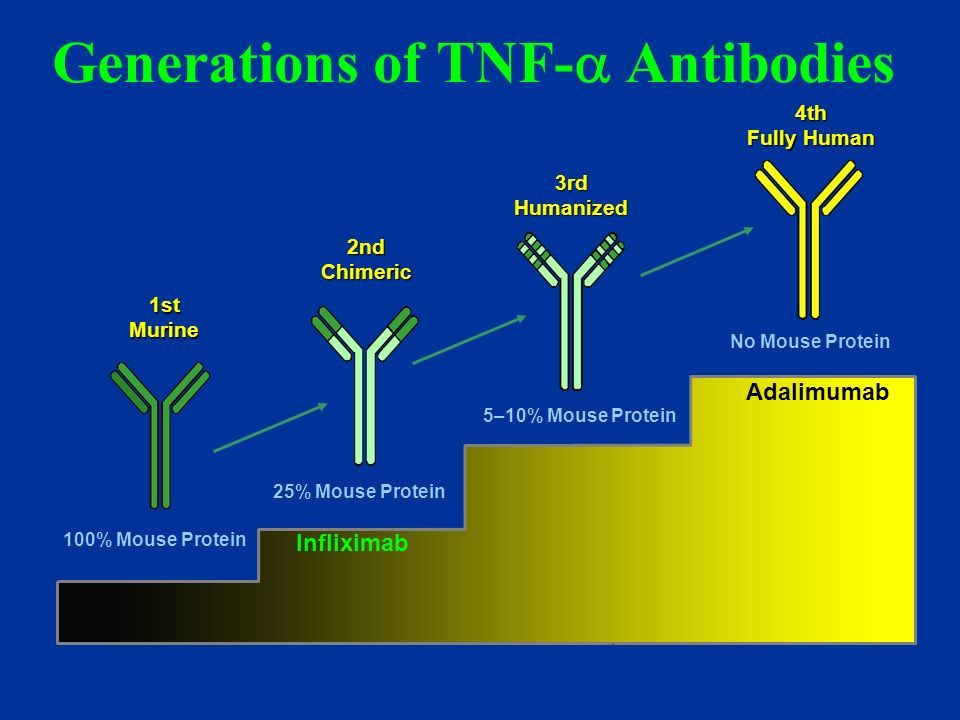 Generations of TNF- Antibodies