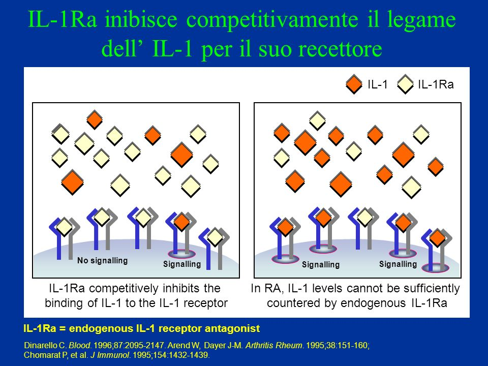 IL-1Ra competitively inhibits the binding of IL-1 to the IL-1 receptor