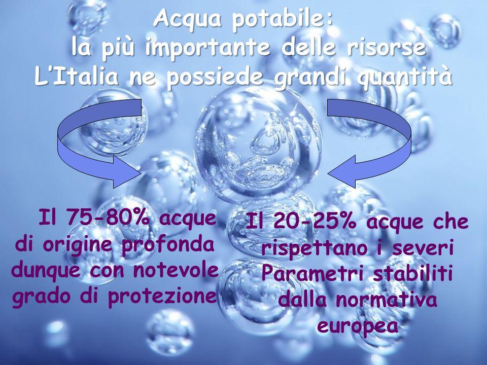 la più importante delle risorse L'Italia ne possiede grandi quantità