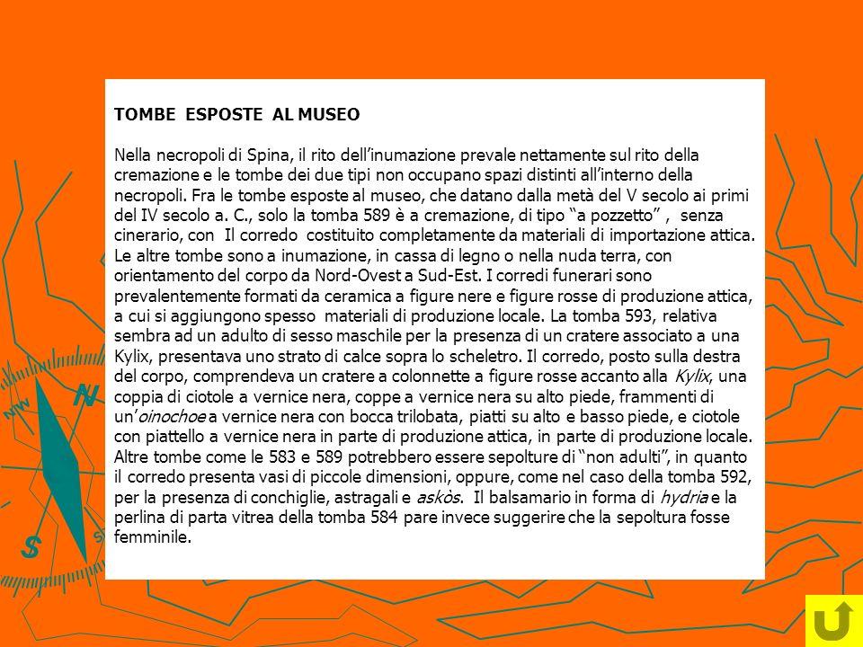 TOMBE ESPOSTE AL MUSEO