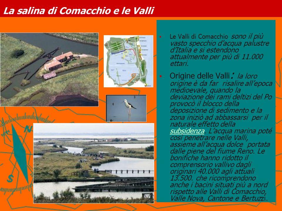 La salina di Comacchio e le Valli