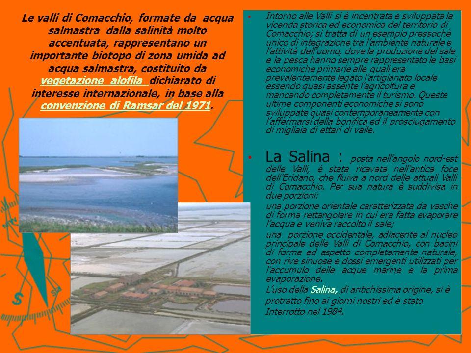 Intorno alle Valli si è incentrata e sviluppata la vicenda storica ed economica del territorio di Comacchio; si tratta di un esempio pressochè unico di integrazione tra l'ambiente naturale e l'attività dell'uomo, dove la produzione del sale e la pesca hanno sempre rappresentato le basi economiche primarie alle quali era prevalentemente legato l'artigianato locale essendo quasi assente l'agricoltura e mancando completamente il turismo. Queste ultime componenti economiche si sono sviluppate quasi contemporaneamente con l'affermarsi della bonifica ed il prosciugamento di migliaia di ettari di valle.