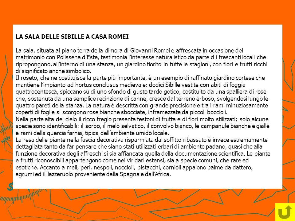 LA SALA DELLE SIBILLE A CASA ROMEI