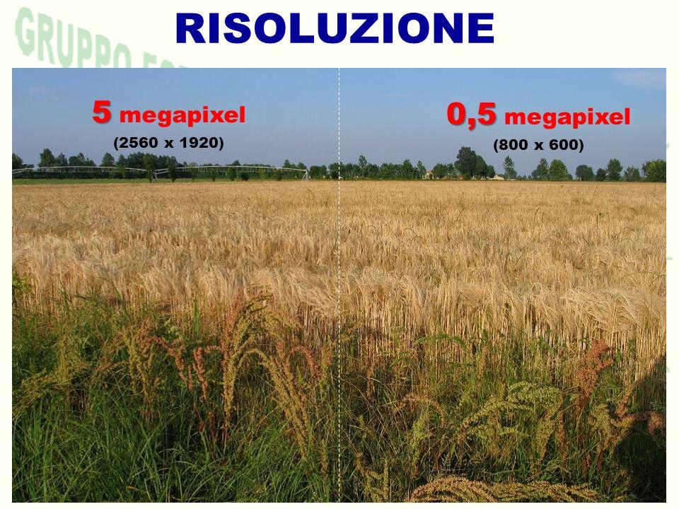 RISOLUZIONE 5 megapixel (2560 x 1920) 0,5 megapixel (800 x 600)