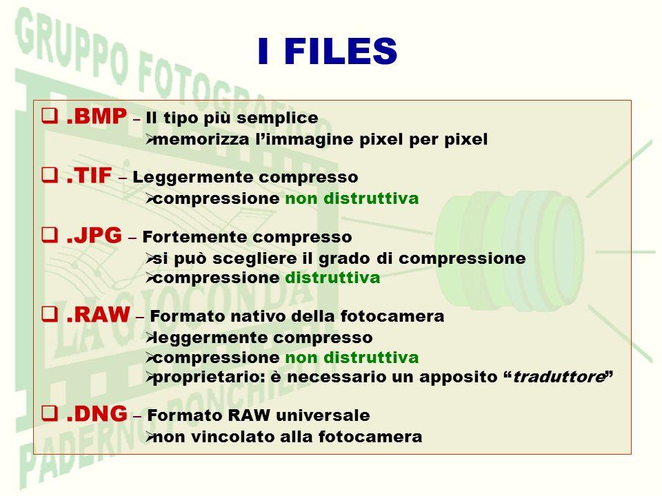 I FILES .BMP – Il tipo più semplice .TIF – Leggermente compresso