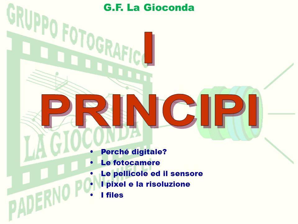 I PRINCIPI G.F. La Gioconda Perché digitale Le fotocamere
