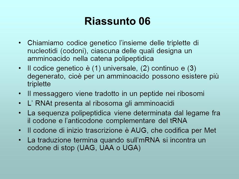 Riassunto 06