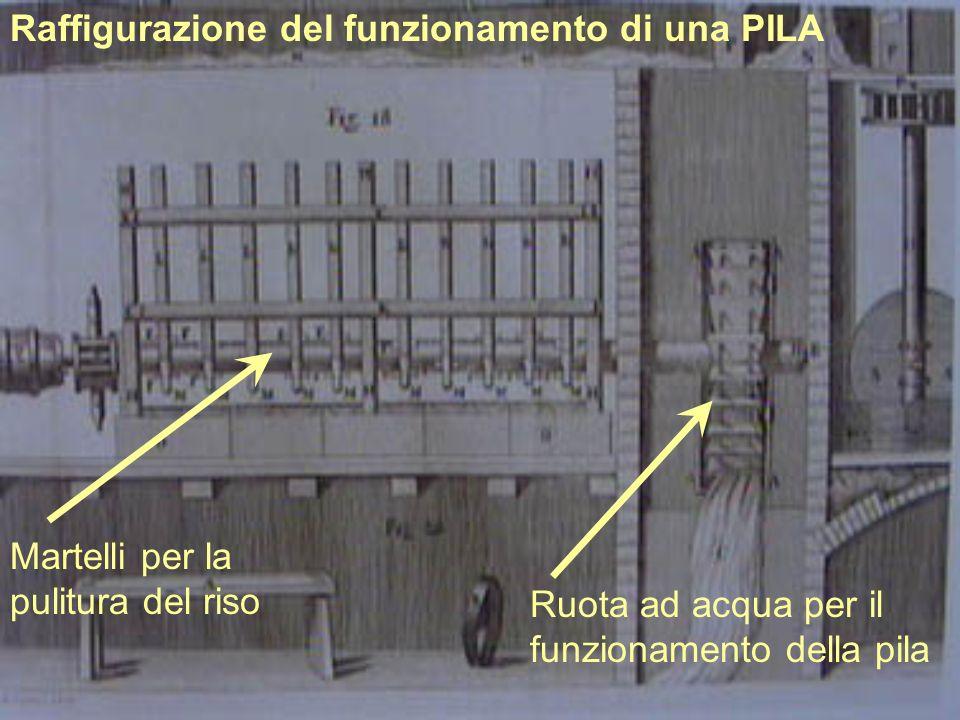 Raffigurazione del funzionamento di una PILA