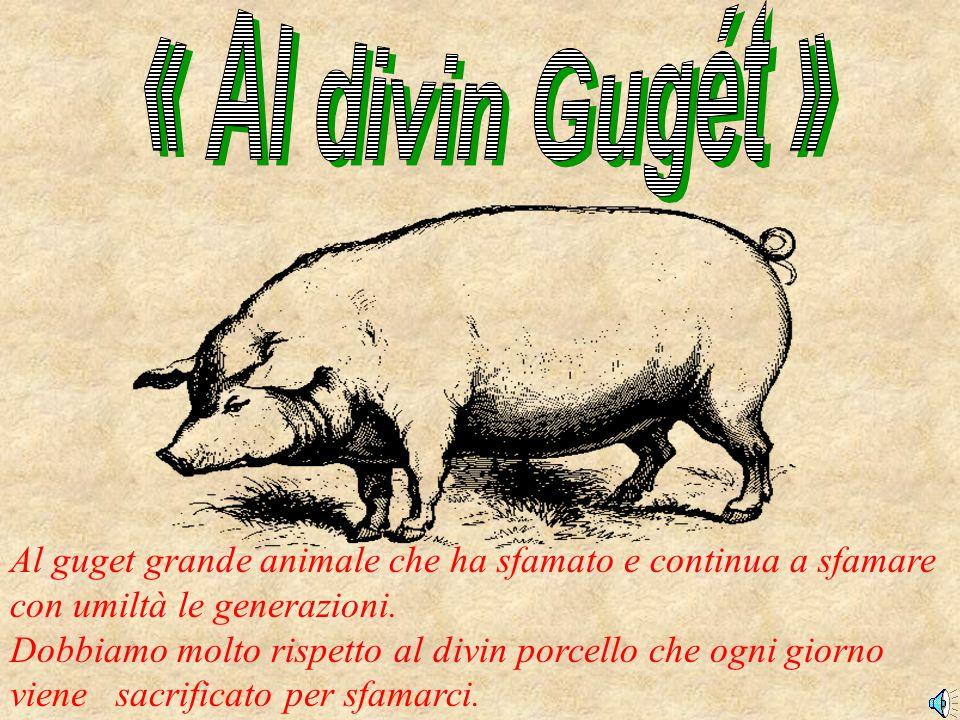 Al guget grande animale che ha sfamato e continua a sfamare con umiltà le generazioni.