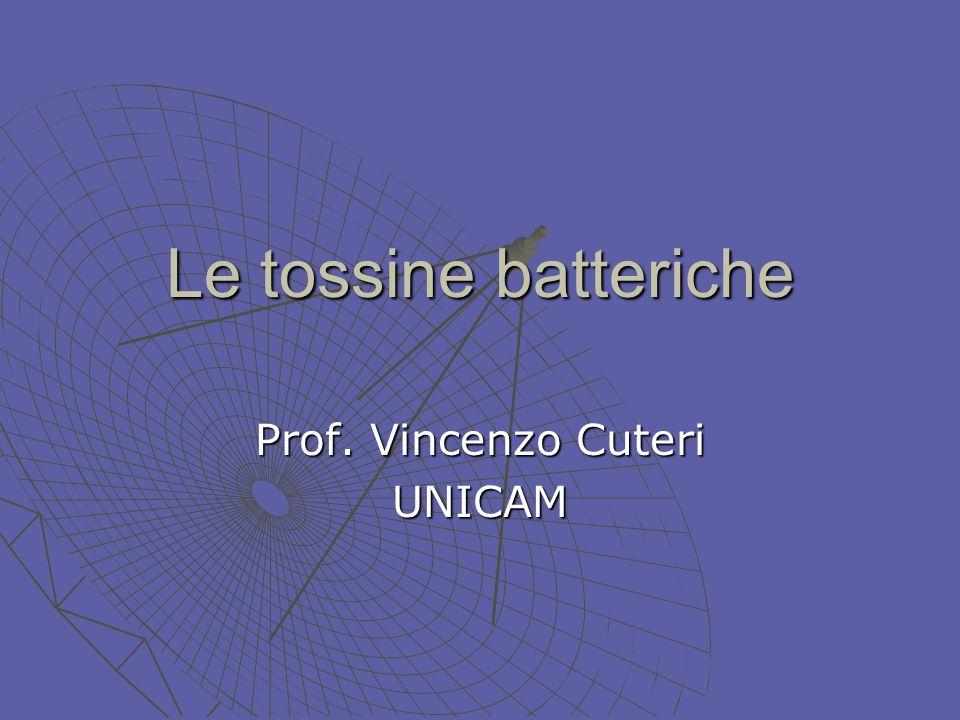 Prof. Vincenzo Cuteri UNICAM