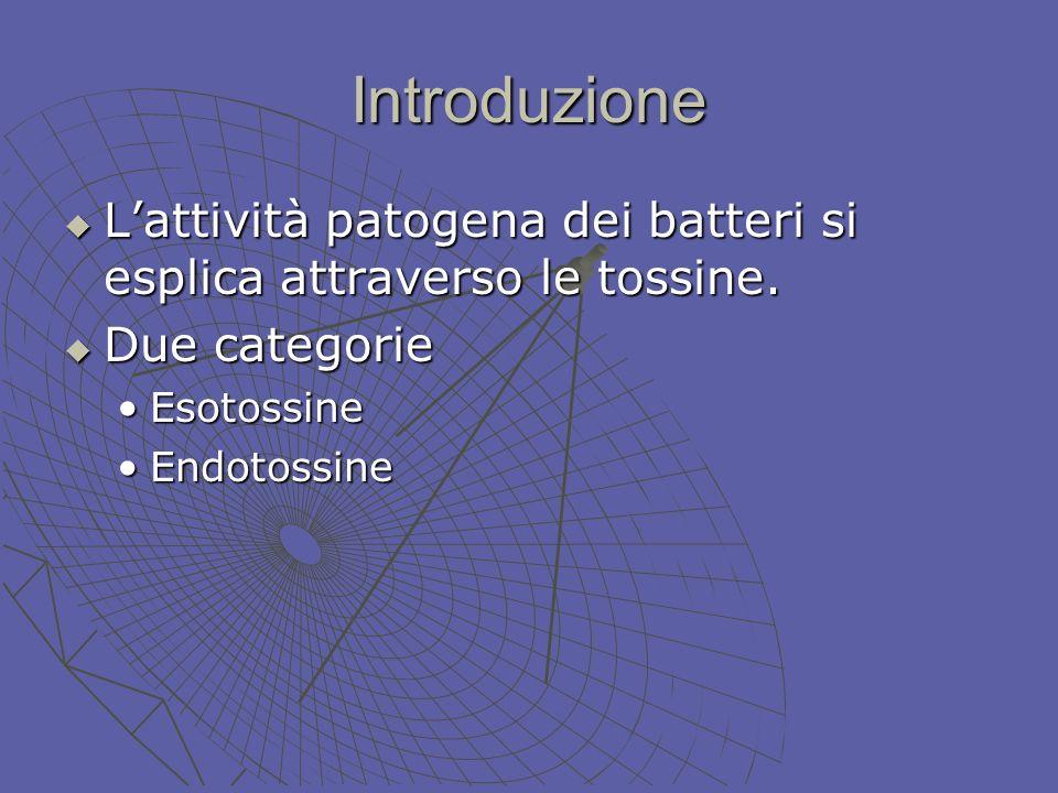 Introduzione L'attività patogena dei batteri si esplica attraverso le tossine. Due categorie. Esotossine.
