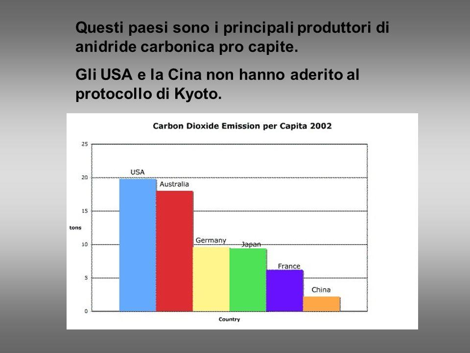 Questi paesi sono i principali produttori di anidride carbonica pro capite.