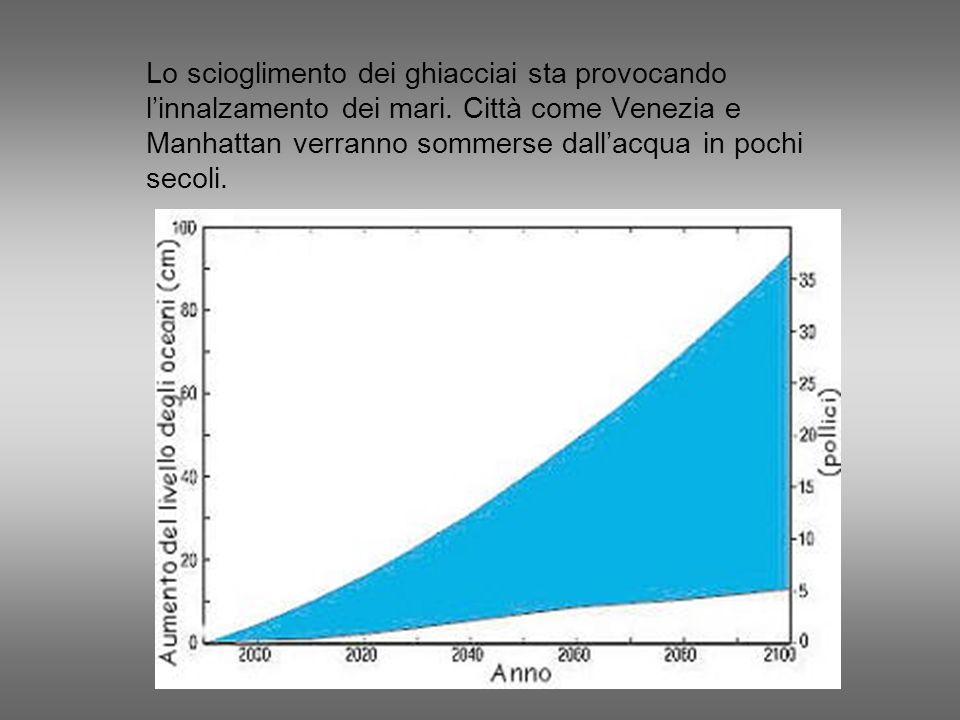 Lo scioglimento dei ghiacciai sta provocando l'innalzamento dei mari