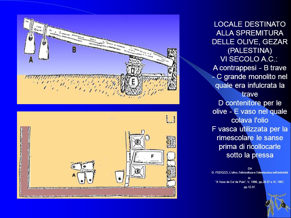 LOCALE DESTINATO ALLA SPREMITURA DELLE OLIVE, GEZAR (PALESTINA) VI SECOLO A.C.: