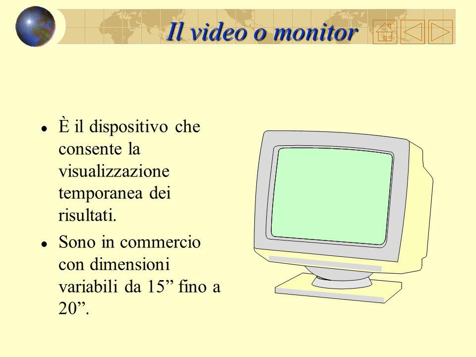 Il video o monitor È il dispositivo che consente la visualizzazione temporanea dei risultati.