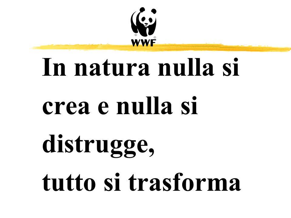 In natura nulla si crea e nulla si distrugge, tutto si trasforma