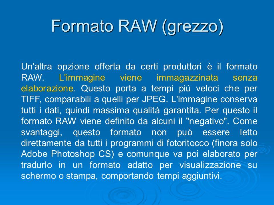 Formato RAW (grezzo)