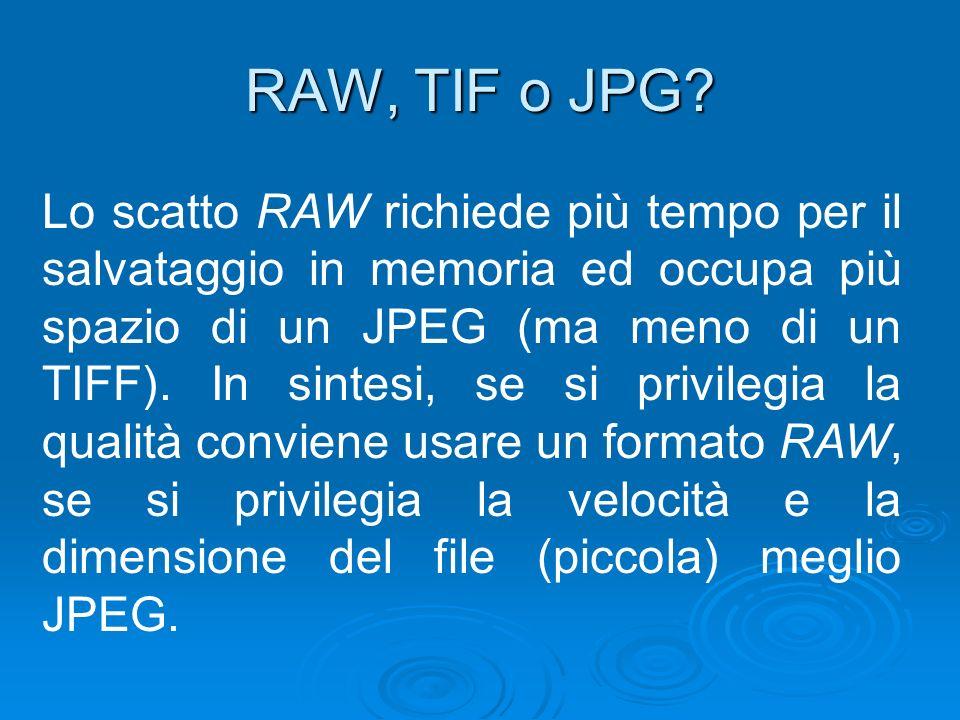 RAW, TIF o JPG