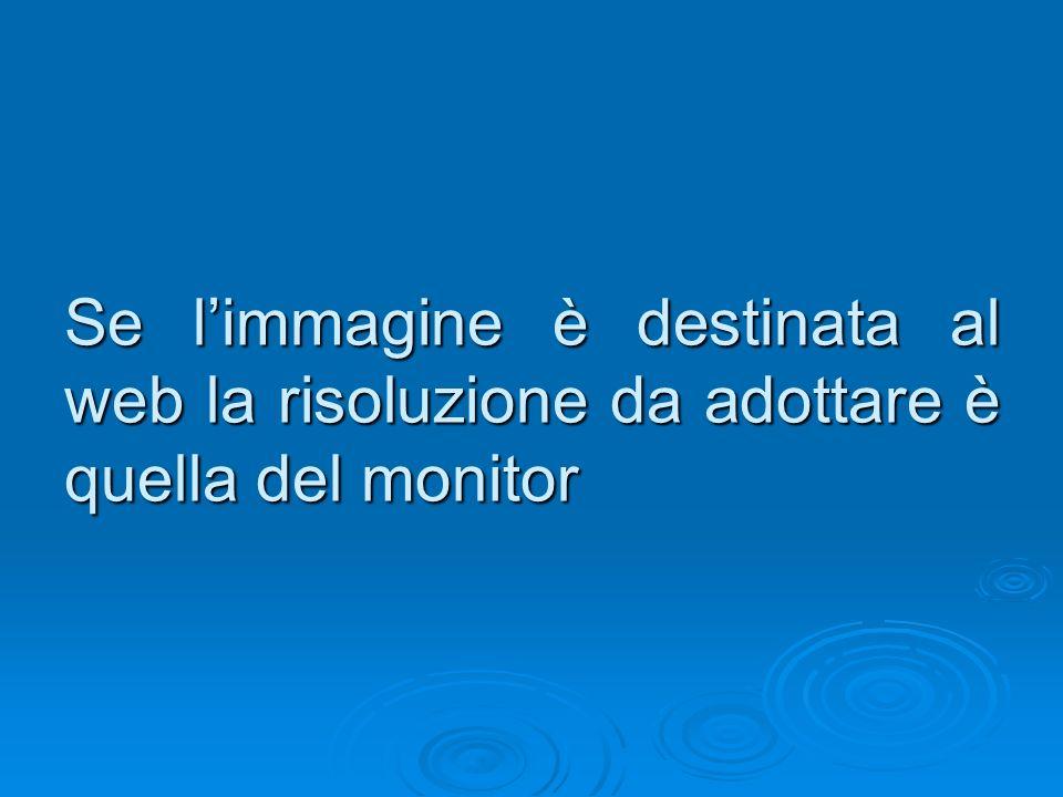 Se l'immagine è destinata al web la risoluzione da adottare è quella del monitor