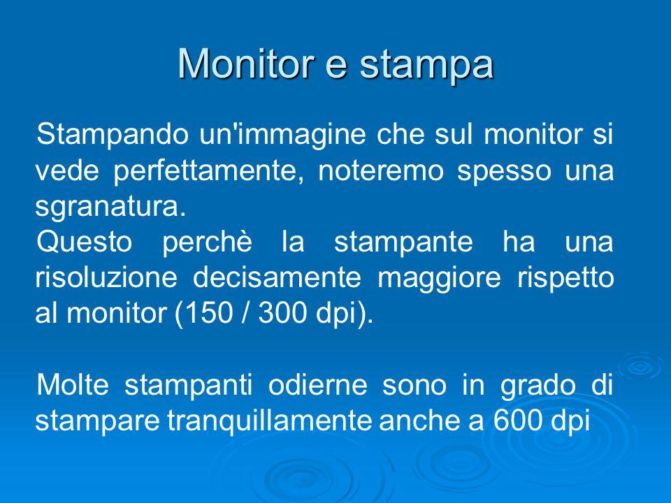 Monitor e stampa Stampando un immagine che sul monitor si vede perfettamente, noteremo spesso una sgranatura.
