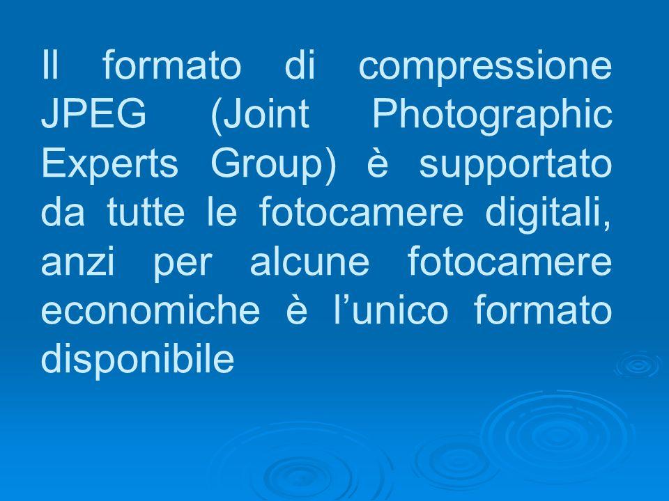 Il formato di compressione JPEG (Joint Photographic Experts Group) è supportato da tutte le fotocamere digitali, anzi per alcune fotocamere economiche è l'unico formato disponibile