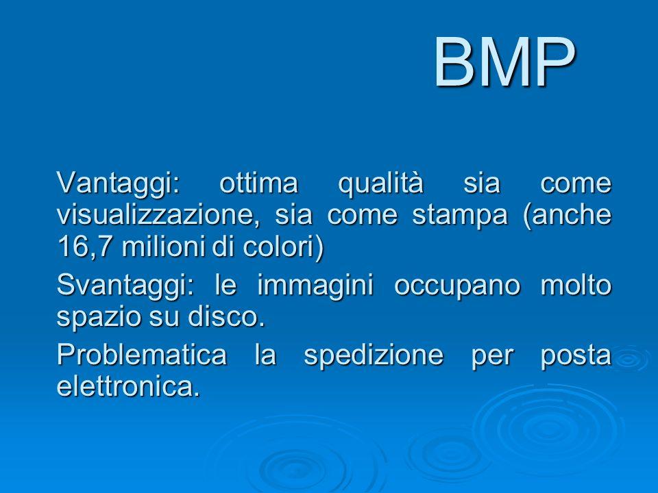BMP Vantaggi: ottima qualità sia come visualizzazione, sia come stampa (anche 16,7 milioni di colori)
