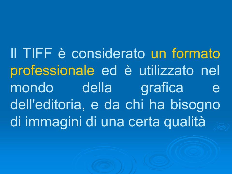 Il TIFF è considerato un formato professionale ed è utilizzato nel mondo della grafica e dell editoria, e da chi ha bisogno di immagini di una certa qualità